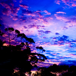 brisbane_sunset